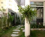 Trang trí vườn theo phong cách hiện đại